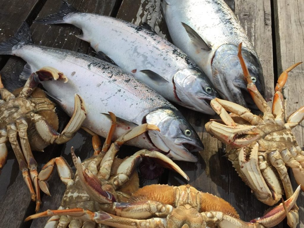 Vancouver salmon fishing and crabbing