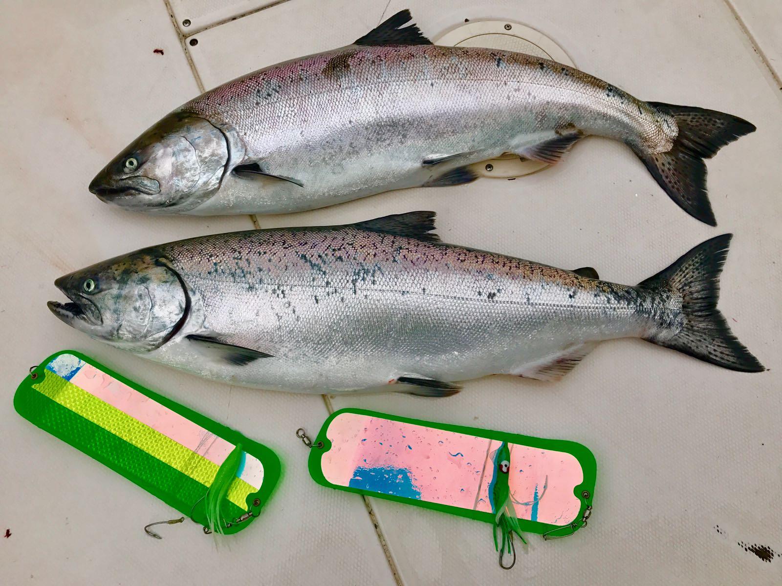 Thrasher_Rock_Salmon_Fishing