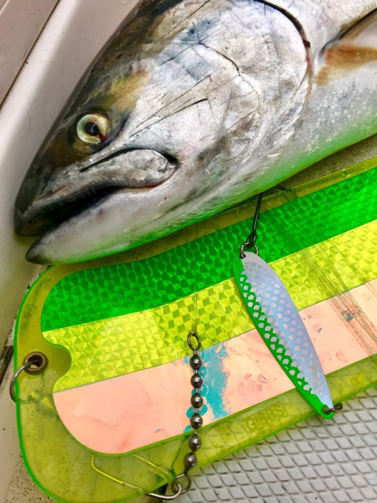 Gibbs_Delta_Fishing_Tackle
